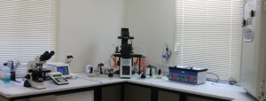 Bundaberg IVF Lab far view